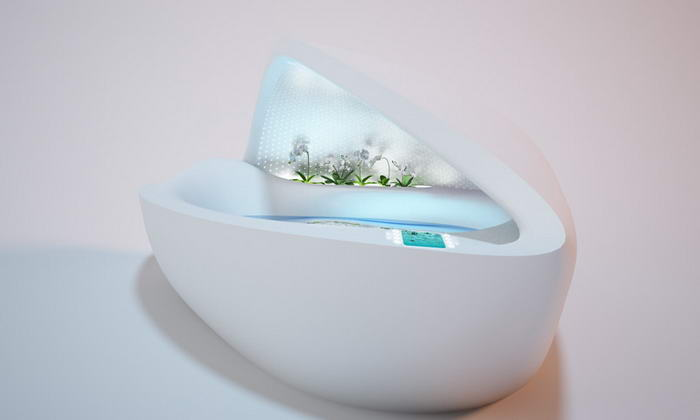 Mother Of Pearl Bathtub (4)
