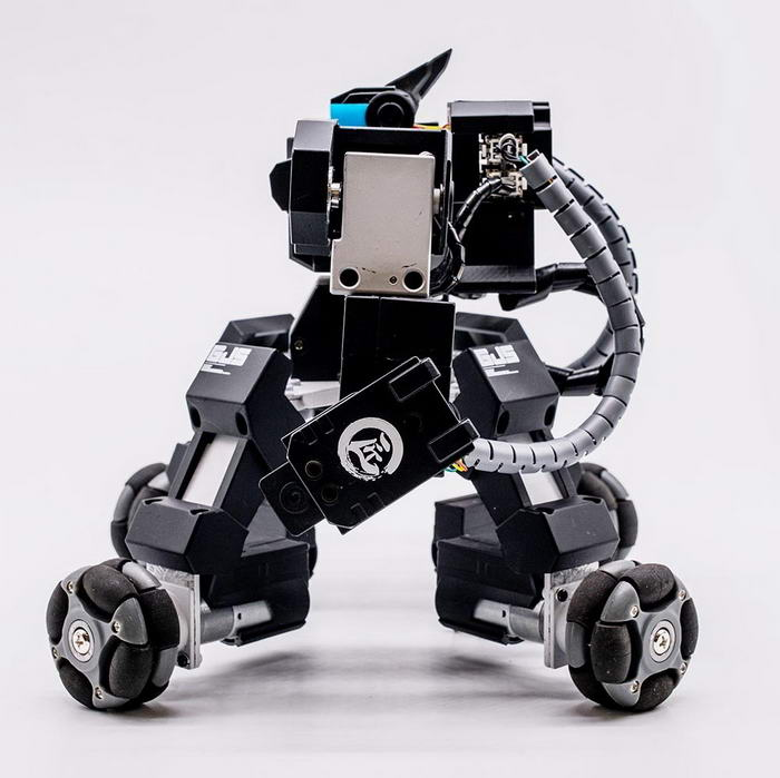 GANKER Fighting Robot (2)